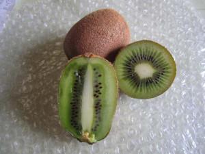 Kiwi02