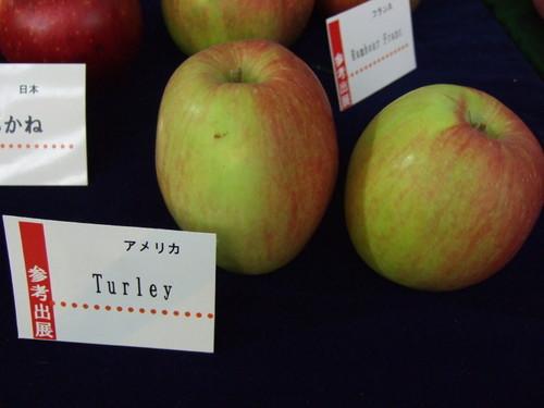 Apple09