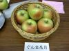 Gunma_meigetu01