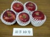 Iwate_10go01