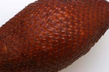 Snakefruit04