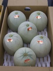 Melon_prince01
