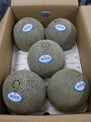 Melon_takami01