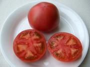 Soprano_tomato12
