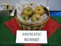Aromtic_russrt_1