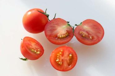 Tomato_midi02