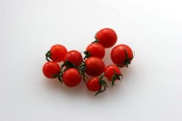 Tomato_mini01