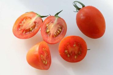 Tomato_plum02