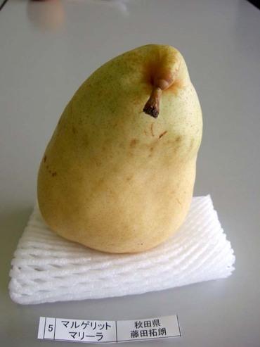 Pear_mmarira01