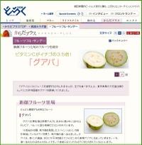 Fs_080502_guava