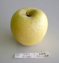 Apple_sgold01