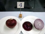 Onion4_02