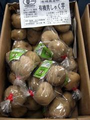 Potato05yuki_dansyaku