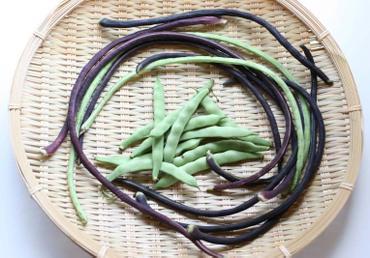 Asparagus_bean01