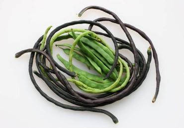 Asparagus_bean02