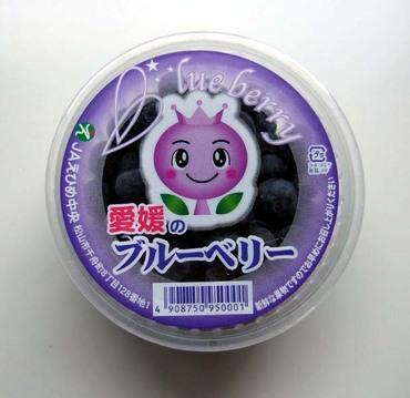 Blueberry01