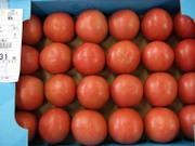 Tomato0101