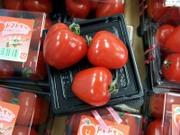 Tomato0801