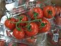 Tomato_husa01