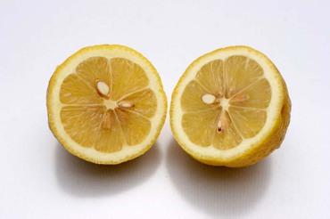 Kataura_lemon02_2