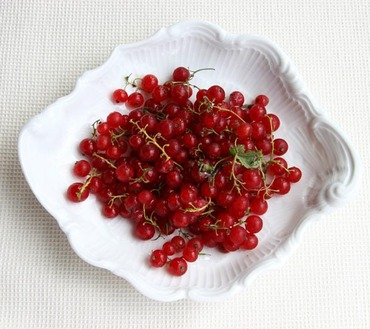 Red_currant1