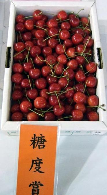 Cherry03