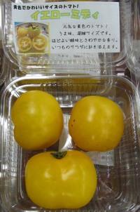 Lemonboy01