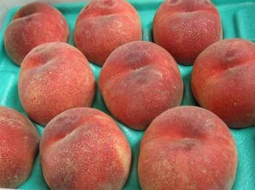 Peach_03