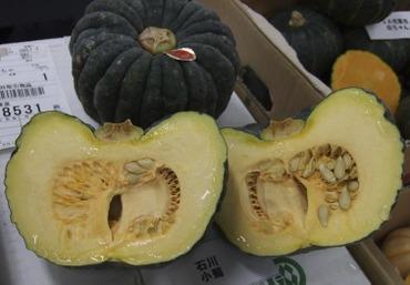 Pumpkinkogiku1