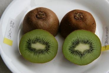 Quwifruit09
