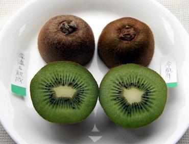 Quwifruit10
