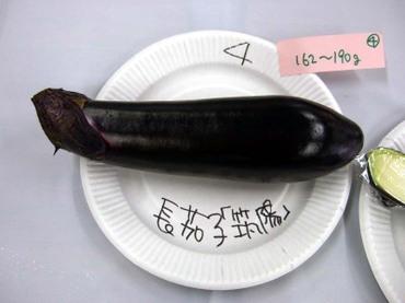 4_naga01