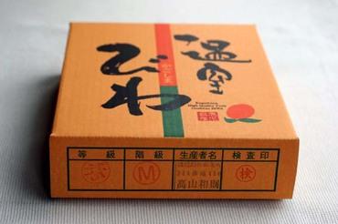 Biwa_01