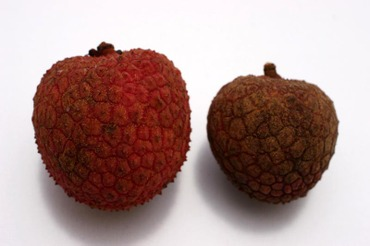 Lychee_compare02