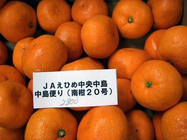 Mikan_nakajima_1