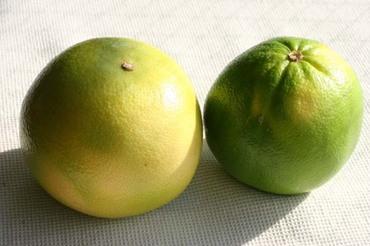 2fruits1