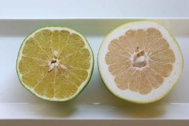 2fruits2