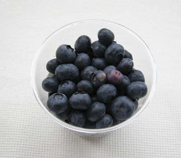 Blue_berryusa1