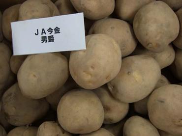 Potato_dansyaku