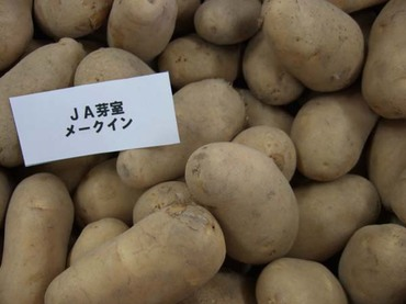 Potato_may