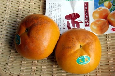 Taishu