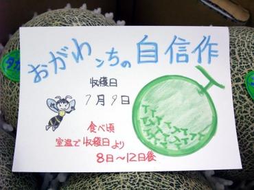 Ogawa_card