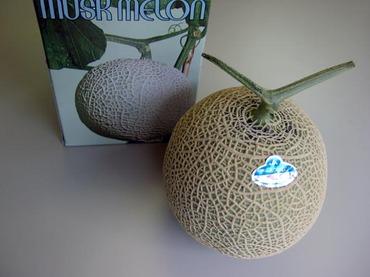 K_melon1