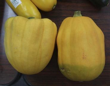 Pumpkinnihon1