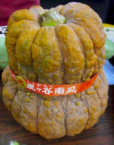 Pumpkinsisi1