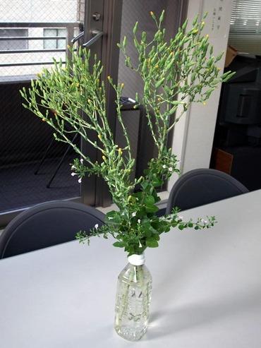 Flower01_2