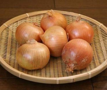 Toyohira02