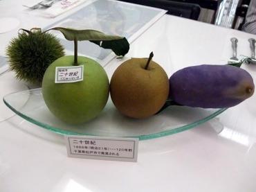 Tenji01