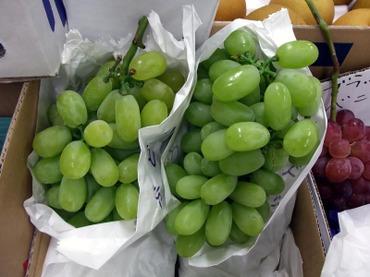 Greensummer01