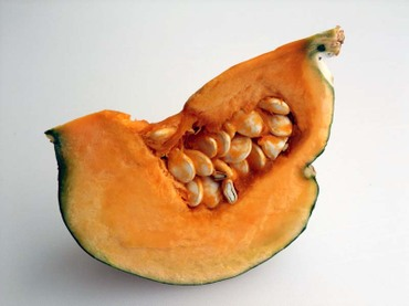 Zao_pumpkin04